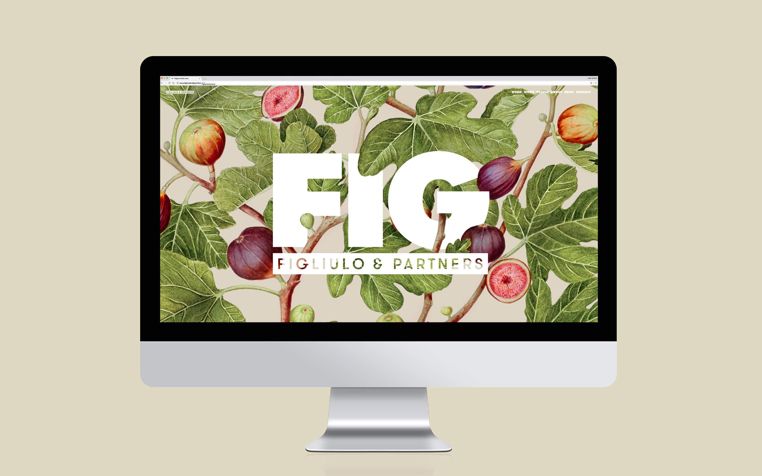 FIG_Website2